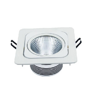 LED COB Down Light C5019-1 10W